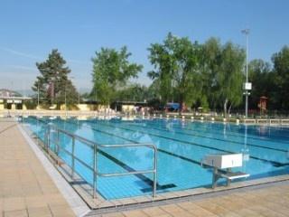 Piscine de la fontenette carouge for Carouge piscine